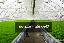 شرکت گلخانه ساز سپید الوند – گلخانه سازی – گلخانه اسپ...